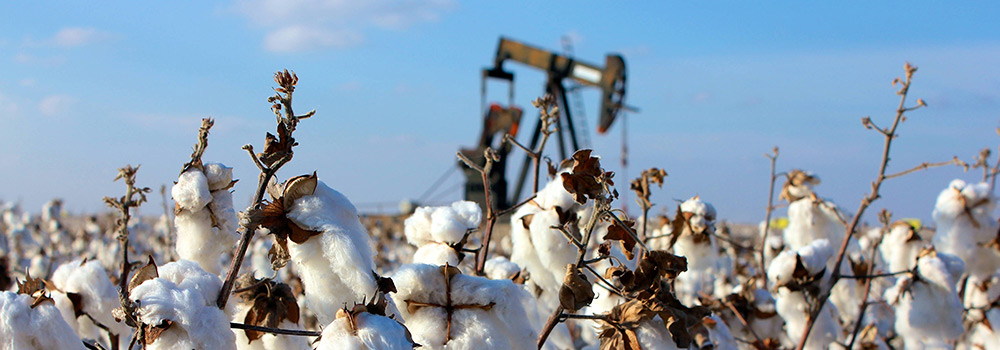 Cotton Gin - photo